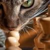 Online Bilder Puzzle Rätsel mit 81 Puzzle Teilen.