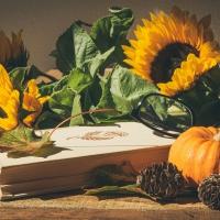 Schiebepuzzle mit dem Motiv Der Herbst zieht ein