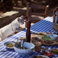 Schiebepuzzle mit dem Motiv Freche Katze zu Tisch