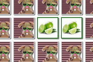 Das beliebte MemoBunny Spiel - Bilder Paare Finden - online Gedächtnisspiel ist auch bekannt unter den Rätsel Namen Pairs, Zwillingsspiel, Zwei Gleiche, Paare Finden oder Erinnere Dich. Auf dem MemoBunny Spielfeld wird eine Anzahl Karten Paare verdeckt angezeigt. Du darfst immer zwei von den Spielkarten gleichzeitig aufdecken.
